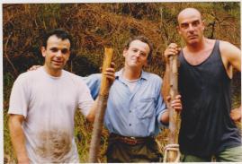 taglio bosco macalle 1996 001